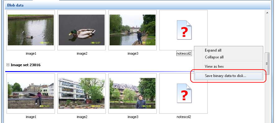 SQL Image Viewer online help - Unidentified images or binary data