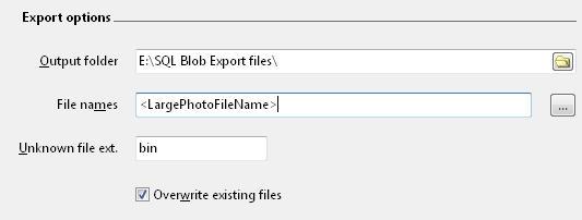 SQL Blob Export - File names
